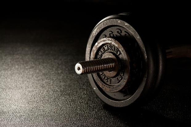 weights-in-the-gym